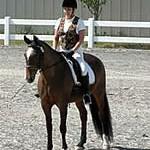 Rocki - Dressage Equitation