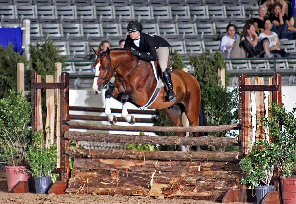 Hayley Barnhill Shows Safari to Victory in $50,000 USHJA ...