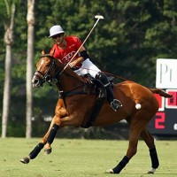 Nico Pieres of Audi hits a neck shot to get the ball downfield