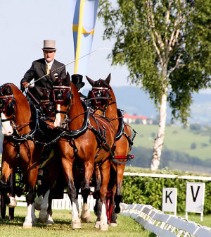 Chester Weber, shown here competing in 2011 at the CAI Altenfelden. (Photo courtesy of Marie de Ronde-Oudemans)