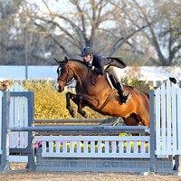 ©ESI Photography. Amy Zettler and Glad Rags on course in the $5,000 HITS Hunter Prix