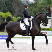 David Marcus and Don Kontes at the 2013 Palm Beach Dressage Derby CDI-W