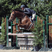 Quaker Vale wins the inaugural TAKE2 Thoroughbred Hunter and Jumper Division. Flashpoint Photography