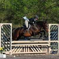 ©ESI Photography. Amy Zettler and Glad Rags won the $1,500 HITS Hunter Prix