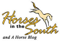 Horses in the South &#8211; A Horse Blog