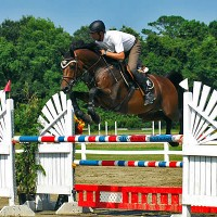 Christopher Schroeder sails over an oxer in the irons of GK Performance Horses, LLC's Diamont De Ravel to the win