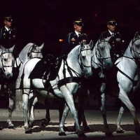 The U.S. Army's Caisson Platoon will give an exhibition on Military Night