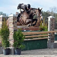Holly Shepherd and LPF Woodward clear an oxer on their way to the $10,000 USHJA International Hunter Derby win