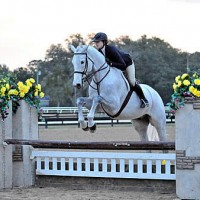 ©ESI Photography. Sophia Lothrop and Castell jump to a win in the $1,500 Platinum Performance Hunter Prix