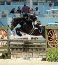 National Horse Show Named National Show Hunter Hall Of