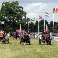 Team USA at the closing ceremony of the 2014 FEI World Para-Equestrian Driving Championships