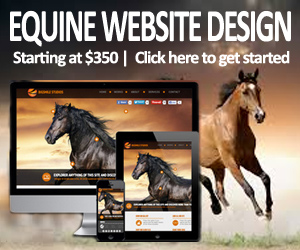 Equine Website Design