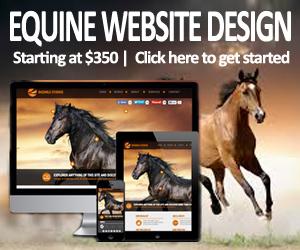 Equine Website Design