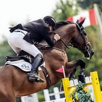 Hugh Graham and Airborne claimed the $35,000 CSI2* Henry Equestrian Plan Open Welcome