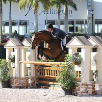 Peter Pletcher and Thanks for the Gold