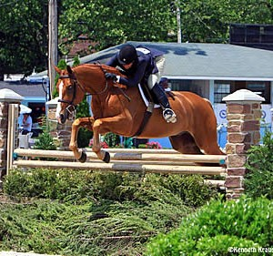 qualifying-lists-for-devon-horse-show-and-country-fair-are-now-posted