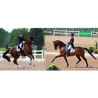 Brittany Fraser with All In (left) and Chris Von Martels with Zilverstar (right) (Left photo courtesy of Horse Junkies Unlimited; Right photo courtesy of Jessica Mendoza)