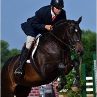 Dress Balou, piloted by Vale, won the $2,500 USHJA National Hunter Derby yesterday.
