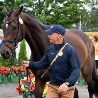 Steffen Peters and Legolas 92 (StockImageServices.com)