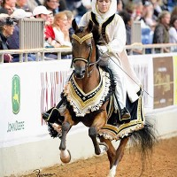 Arabian Mounted Native Costume class