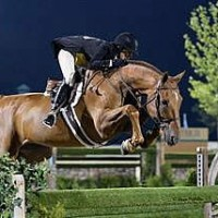Brunello (Shawn McMillen Photography)