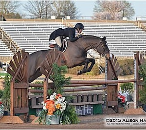 The Countdown To The Atlanta Spring Classic Is On Horses